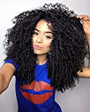 Maxine 9A Mongolian Afro Human Hair Lace Front Wig Afro Kinky Curly Wigs Heat Resistant Hair for...